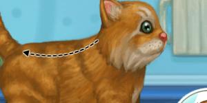Spiel - My Sweet Kitten