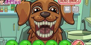 Spiel - Pet Crazy Dentist