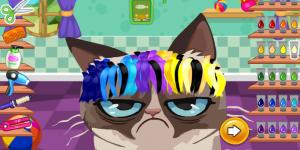 Spiel - Angry Cat Hair Salon
