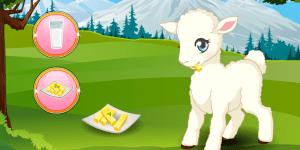 Spiel - Pet Stars: Lovely Lamb