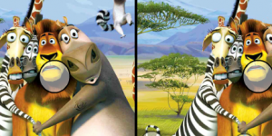 Spiel - Madagascar Differences
