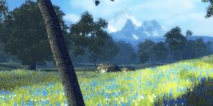Spiel - Nature Treks Healing With Color