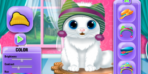 Spiel - The Baby Kitten Care And Dressup