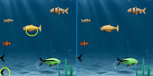 Spiel - Fishing Difference