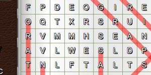 Spiel - Word Search