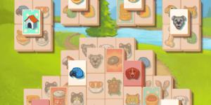 Spiel - Petjong