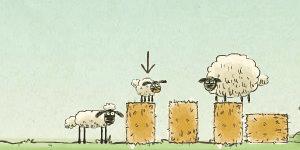 Spiel - Home Sheep Home