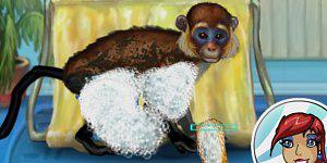 Spiel - My Funny Monkey
