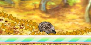 Spiel - Forest Hedgehog